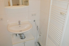 Obj.-Nr.-06210209-Duschbad-Waschbereich