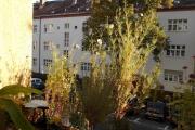 Obj.-Nr. 24191004 - Balkon-Loggia Ausblick