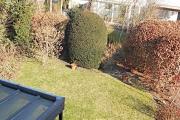 Obj.-Nr. 10180306 - OG Blick in den Garten